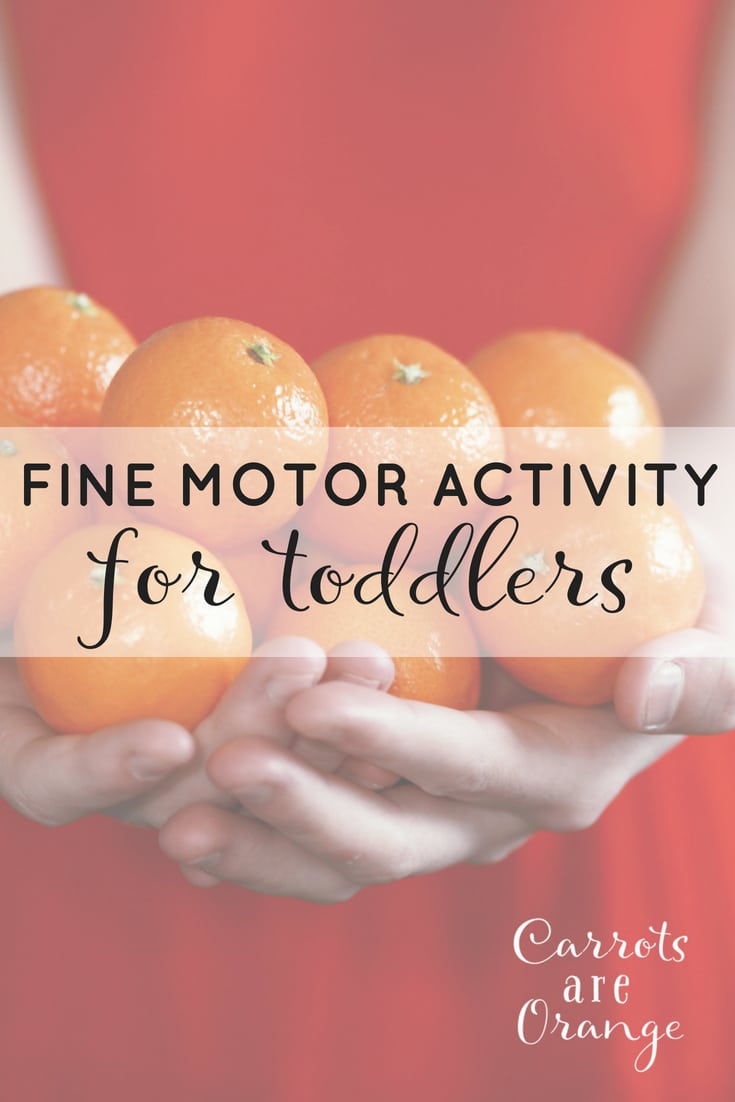 Fine Motor Activity for Toddlers