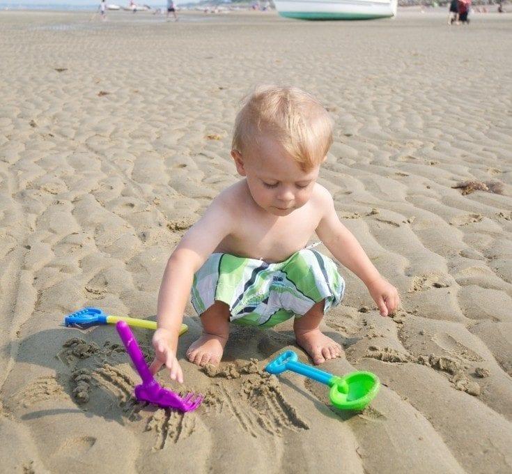Beach Exploration Activities