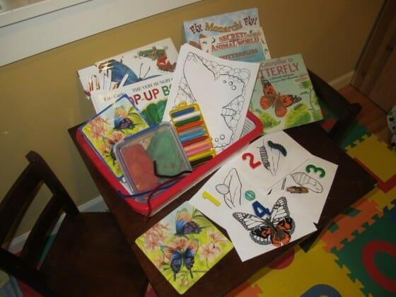 butterfly Caterpillar to Butterfly   Toddler/Preschool Unit