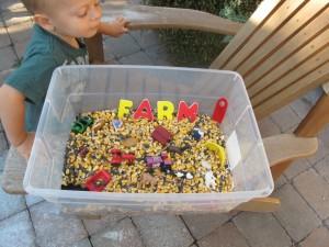 farm sensory tub 300x225 Farm Themed Sensory Tub