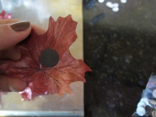 Montessori Themed Fall Math Activity with Leaves