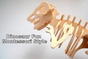 Dinosaur Fun - Montessori Style