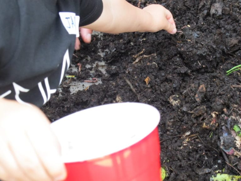 How to Make a Worm Tower - Gardening Activity for Kids