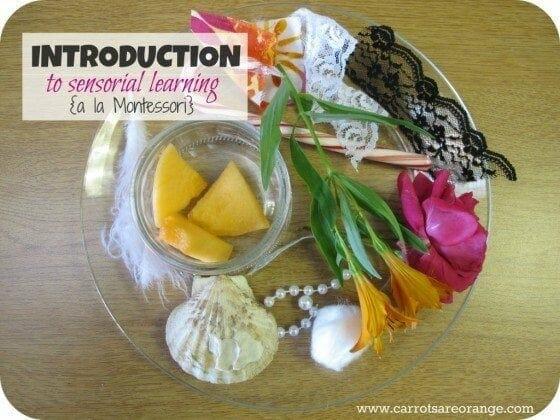 IntroductionSensory