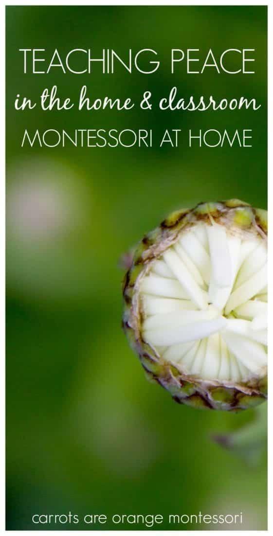 Montessori Peace Education