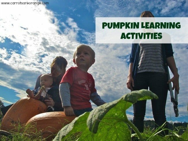 pumpkinlearning 4 Ways to Learn with Pumpkins {Autumn Activities}