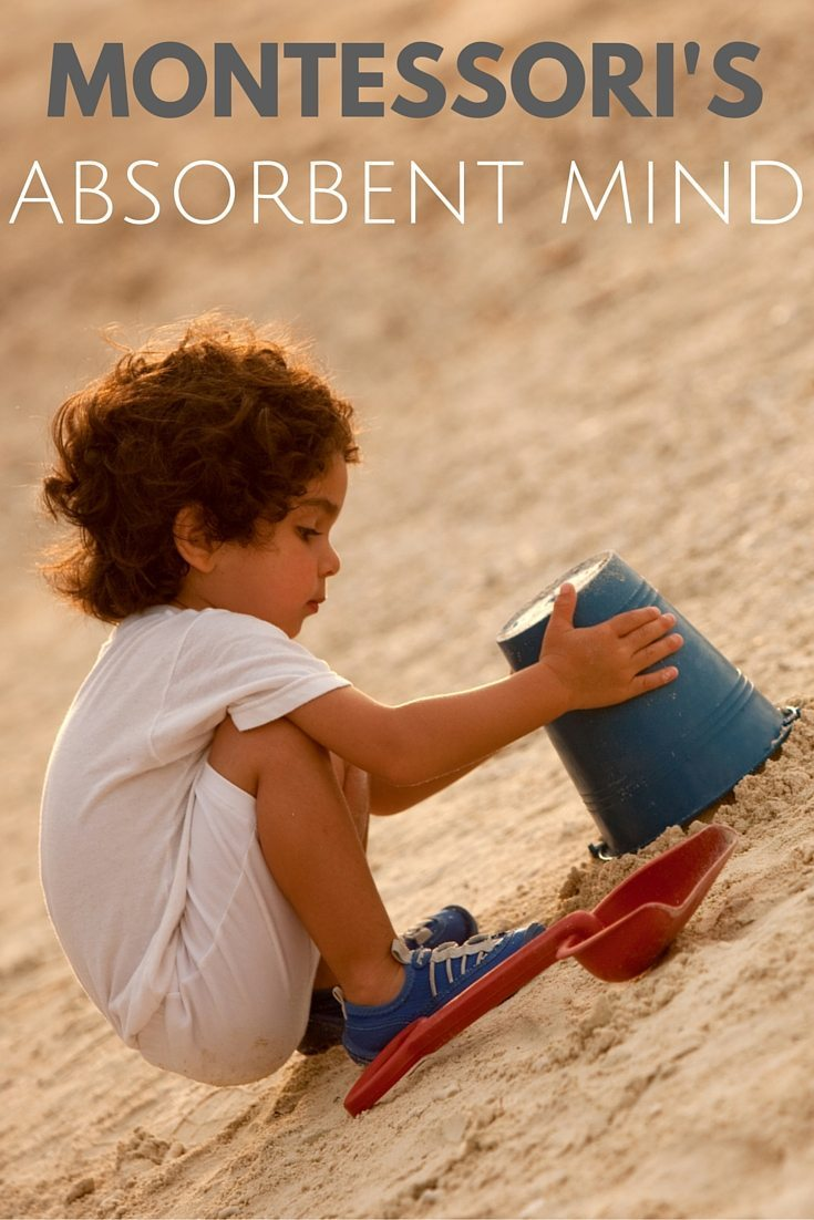 "absorbent mind essay ""before three, the functions are being created after three, they develop"" maria montessori, the absorbent mind when a child is born, they are born wi."