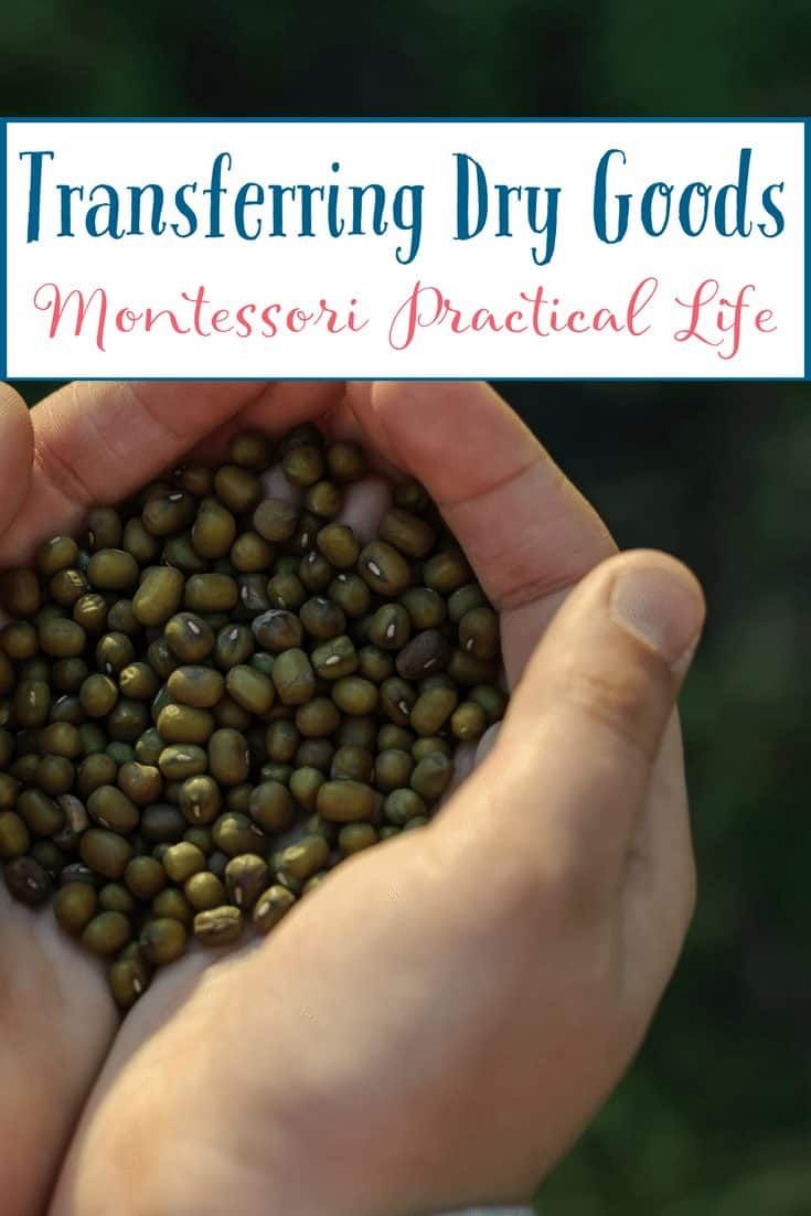 Montessori Practical Life Lesson - Transferring Dry Goods