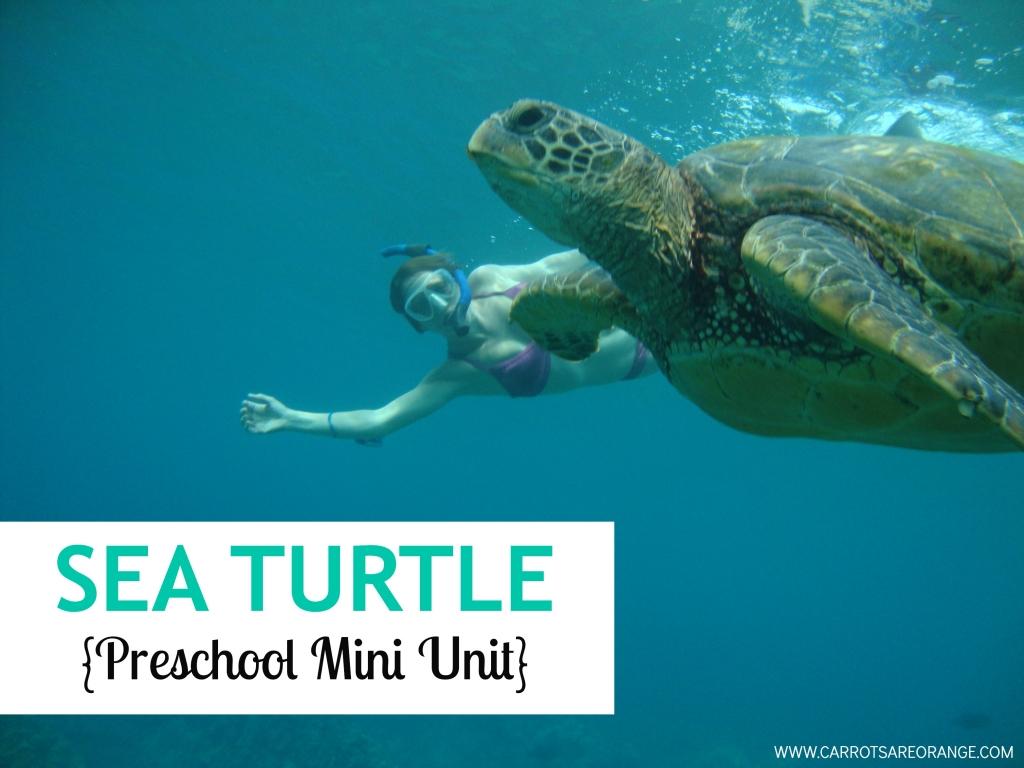 Sea Turtle Mini Unit | Carrots Are Orange