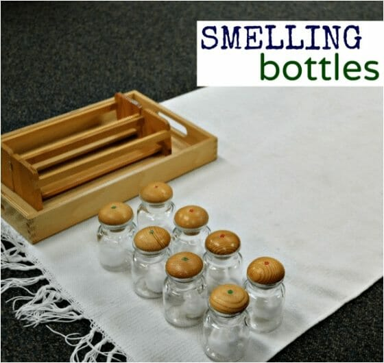 Learn the Smelling Bottles Montessori Lesson