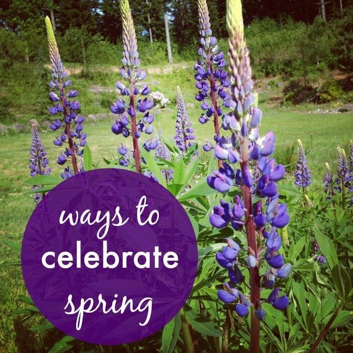 Celebrate Spring with Kids