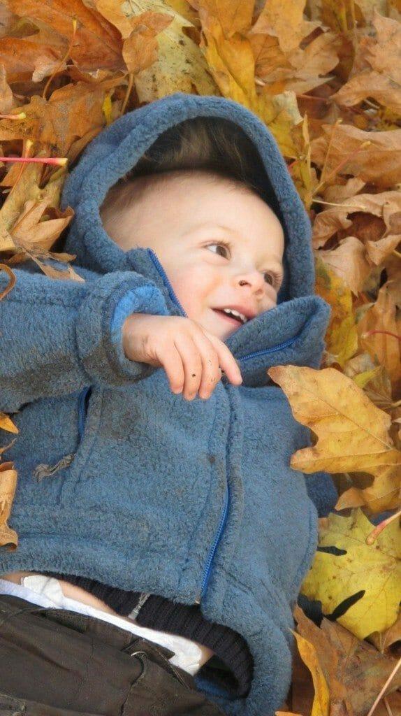 Leaf Pile Fall
