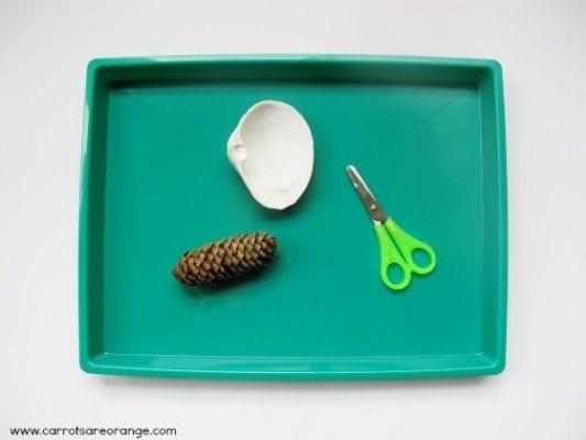 pineconecutting