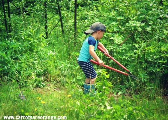 kids_outdoors_chores