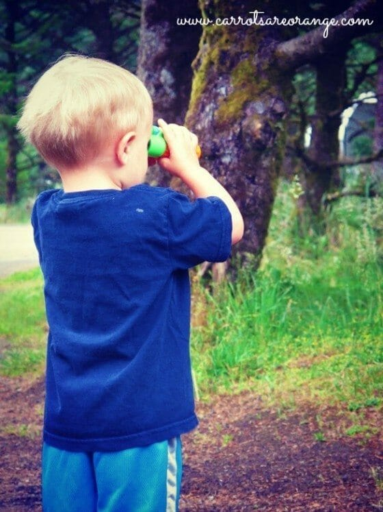 camping with kids binoculars Learning in Nature with Children