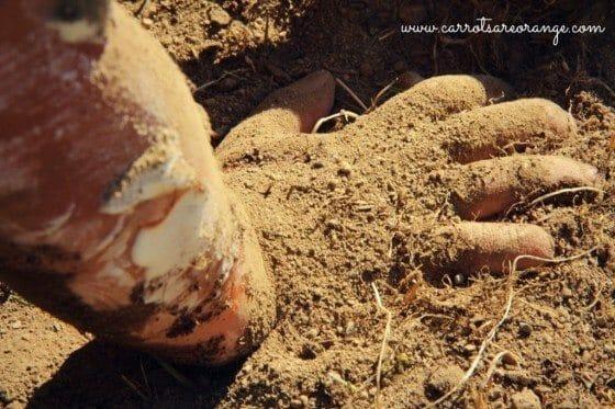 sensory_hand_sand