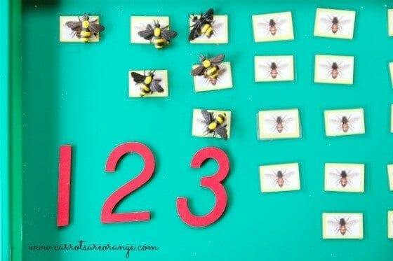 math_honey_bees