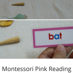 Short Vowel Word Labels & Objects Montessori Language Activity