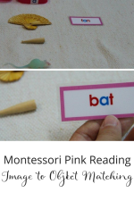 Short Vowel Word Labels & Objects Montessori Lanaguge Activity