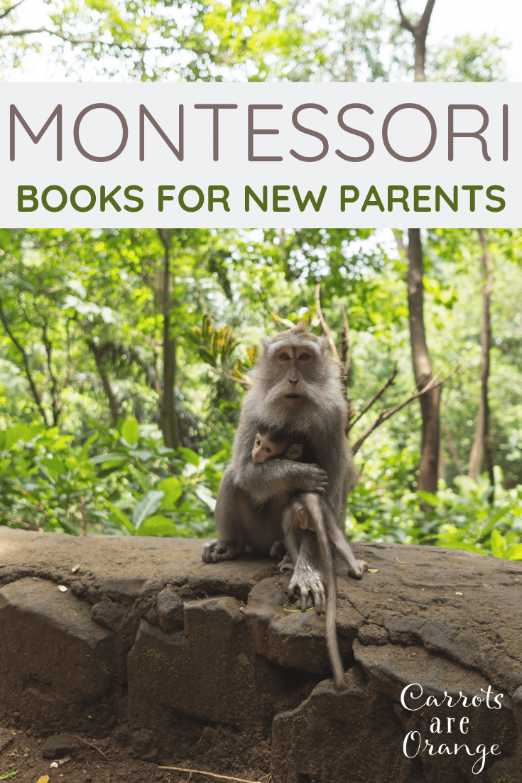 Montessori Books for New Parents
