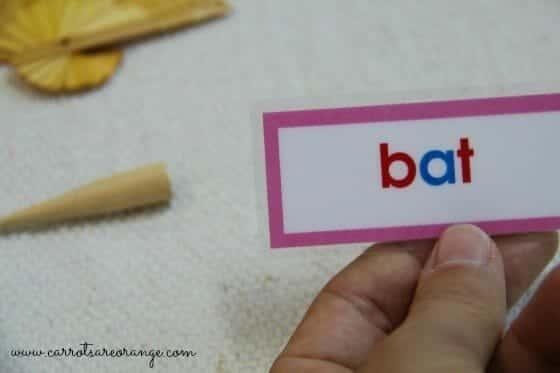 short vowel lesson pink level