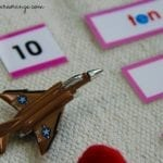 Short Vowel Word Labels & Objects Montessori Lanaguge Activity