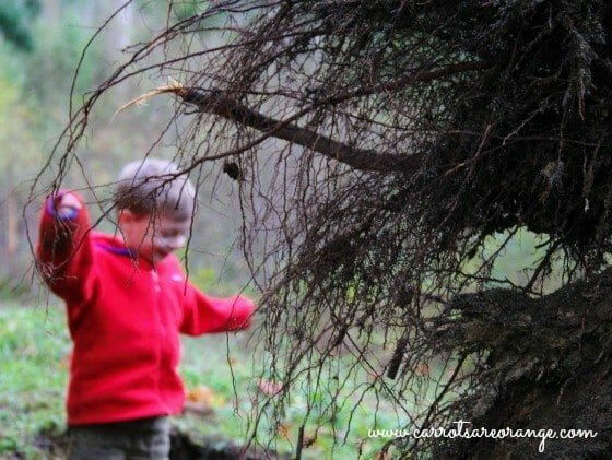 Winter Activities for the Outdoors - Quotes for Outdoor Learning