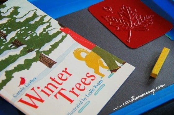 Winter Botany Activity for Kids