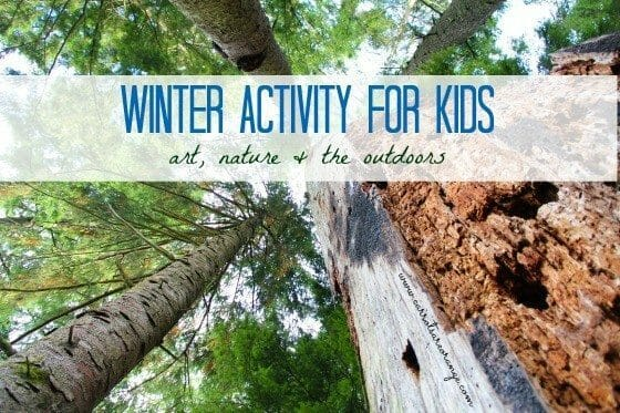 winter_trees_activity