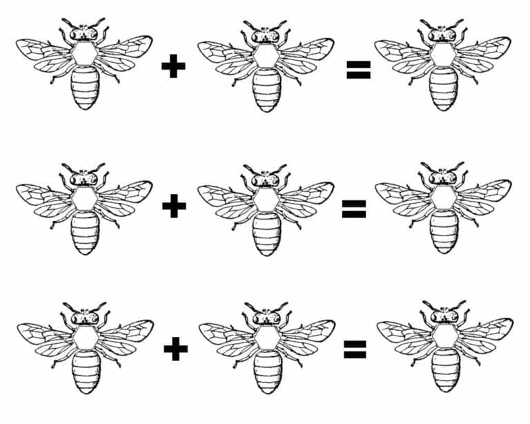 Fun Montessori Math Activity with Honeybees