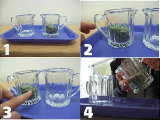Montessori_pouring_dry_goods