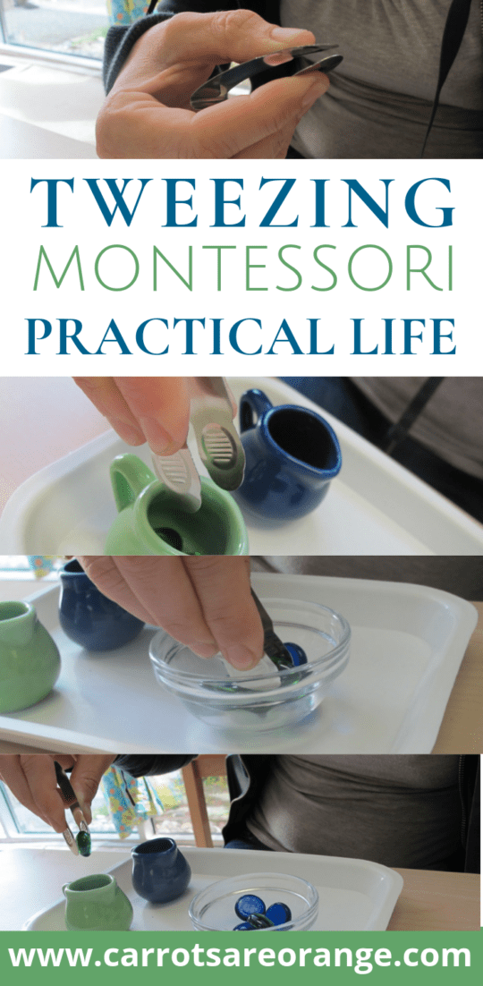 Fine Motor Exercise for Kids - Montessori's Tweezing Lesson