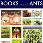 Children's Books about Ants