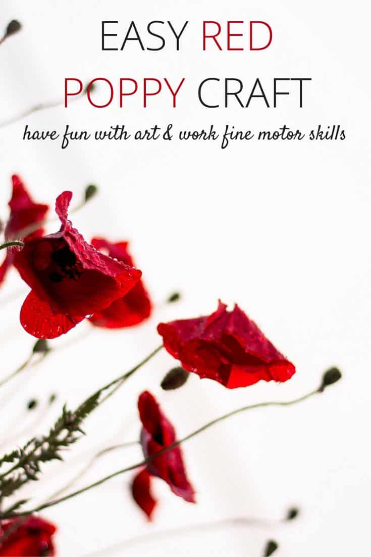 Beautiful Red Poppy Craft for Kids