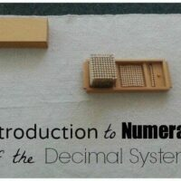 Montessori Math Introduction to Numerals of the Decimal System