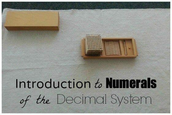 intro numerals main