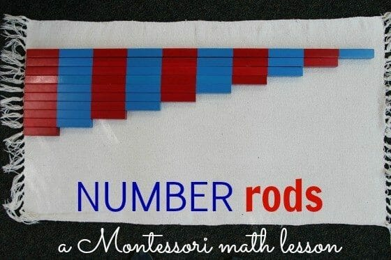 All You Need to Know about the Astonishing Number Rods