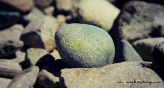 rock_collecting_kids