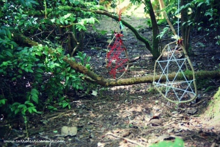 Dream Catchers Made from Natural Materials Hanging in the Forest