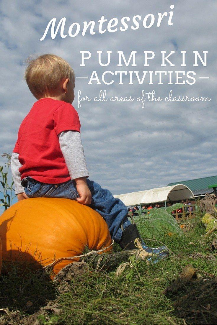 Montessori Pumpkin Activities