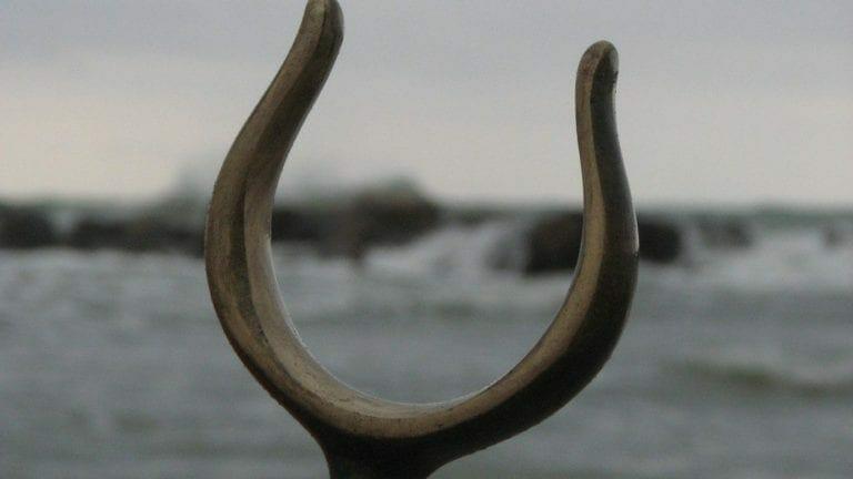 Wishbone Activities