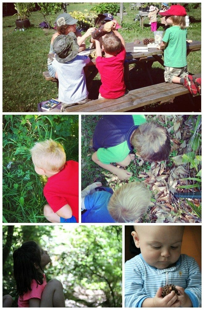 Children Nature Discovery