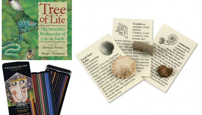 Montessori Gift Ideas for Elementary