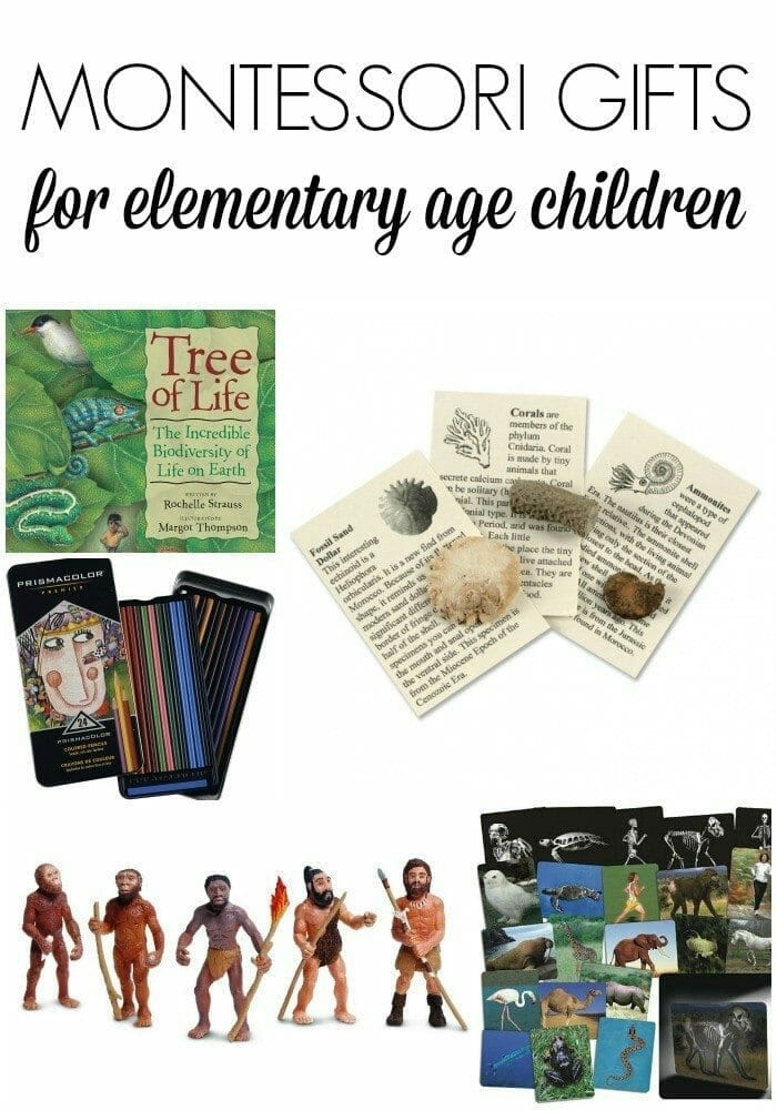 Montessori Gifts for Elementary