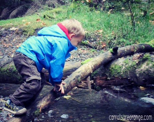 Montessori Outdoor Education