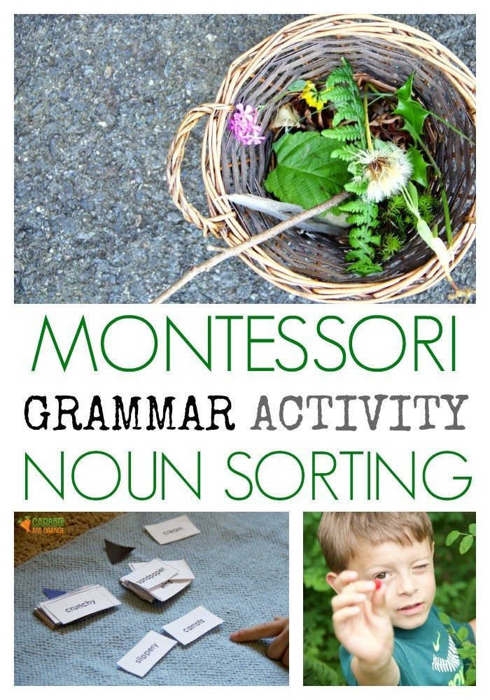 Montessori Noun Sorting Cards are a Must Have to Teach Grammar