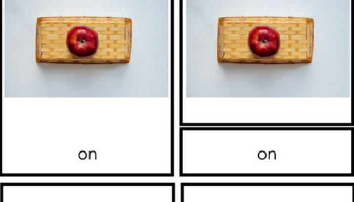 Montessori Preposition Cards with Real Images
