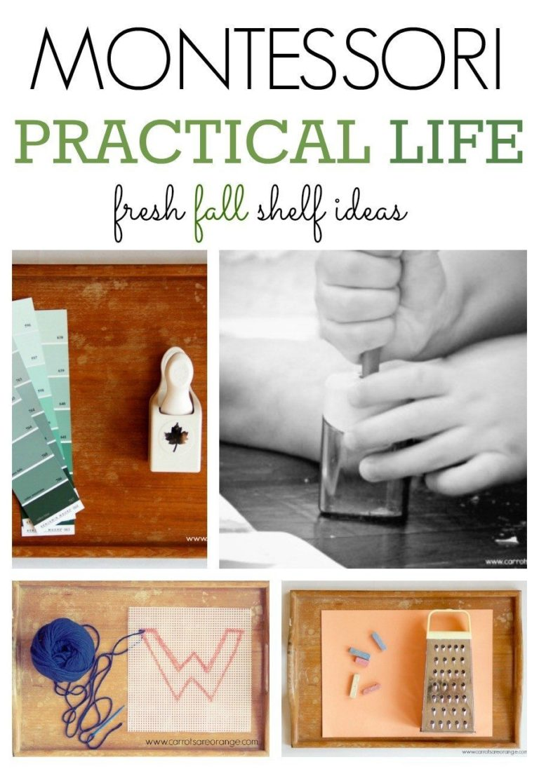 practical life The life skills activities and life skills worksheets found in this book will assist the participant in developing many practical life skills life skills are actually more important than a person's intelligence quotient (iq.