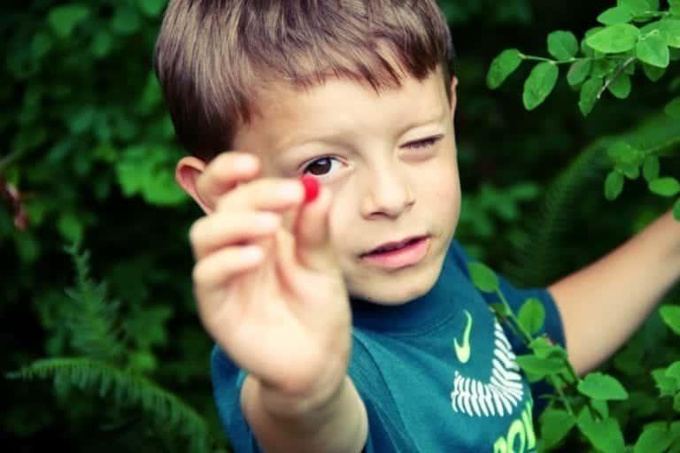 Creative Montessori Outdoor Language Activities Kids Love