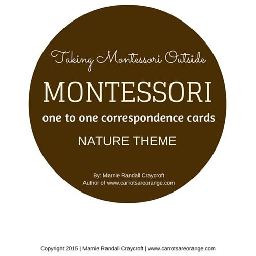 Montessori Math One to One Correspondence